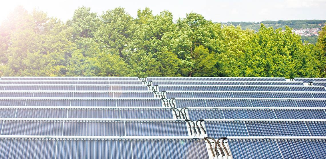 Kollektorfeld einer solaren Großanlage