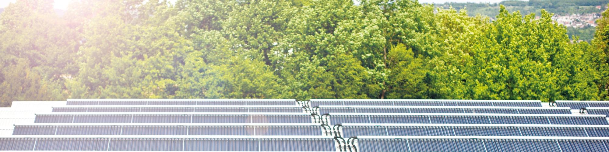 Solare Fernwärme